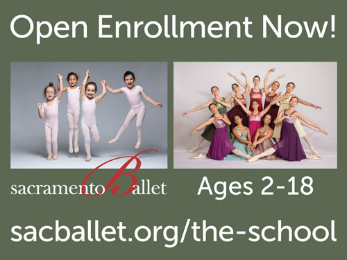 image:The School of Sacramento Ballet Summer Promotions 2019 Lawn Sign Front (24x18 inch)