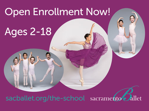 image:The School of Sacramento Ballet Summer Promotions 2019 Lawn Sign Back (24x18 inch)