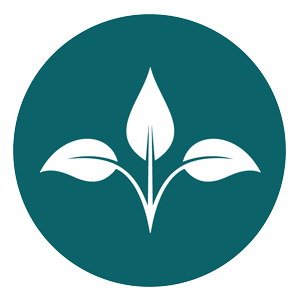 graphic: Bauman Wellness logo