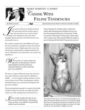 image: Make Habitat a Habit: Canine With Feline Tendencies Page One
