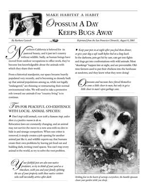 image: Make Habitat a Habit: Opossum a Day Keeps Bugs Away Page One