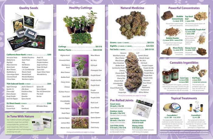 image: OrganiCann™ 2010 Medicinal Cannabis Quad-Fold Products Menu Inside