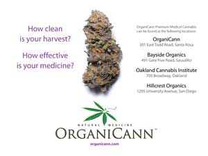 image: OrganiCann & Pure Analytics™ Medicinal Cannabis Potency and Safety Screening Postcard Front