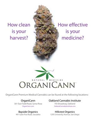 image: OrganiCann™ & Pure Analytics™ Medicinal Cannabis Potency and Safety Screening Poster Front
